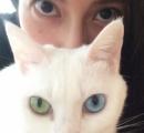 """【画像】柴咲コウと愛猫が瓜二つ。ツーショット公開で""""素敵な瞳に吸い込まれそう""""!"""