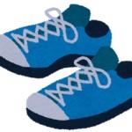 【画像】超絶かっけー靴買ったったぁwww
