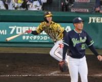 【阪神】ドラ6・中野 7試合連続安打が貴重な適時打に!