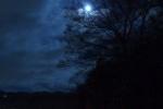 インサイト交野No.39~私市植物園入口のとこにある橋からの月光~