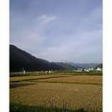 『故郷』の画像