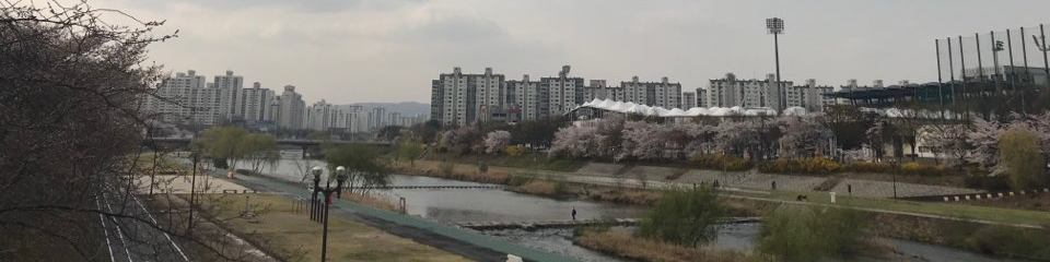 韓国・ブンダン日本語補習授業校 イメージ画像