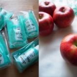 『食器洗い洗剤「ウタマロキッチン」試供品をプレゼント!あとリンゴ』の画像