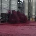 人間は大きな力の前では無力だ・・・。ワイン醸造所でのどうしようもない事態。海外の反応