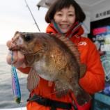 『3月22日 釣果 スーパーライトジギング SLJ メバルは118匹 最大33センチでした。』の画像