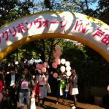『2014年度ピンクリボンウォークIN戸田市 明日10月5日開催』の画像