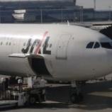 『【日本の旅~東京 羽田空港JAL】』の画像