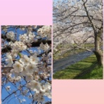 LOVE BEATその宇宙で~堂本剛さん/ENDRECHERI大好きブログ