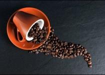 毎日庭にコーヒーかすを撒いていたワイ、咽び泣く