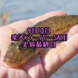 『【9月10日】楽天スーパーセール実質最終日まとめ』の画像