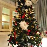 『クリスマスっぽいことはおわった!』の画像