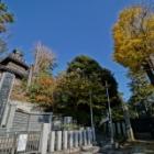 『LAOWA15mmF2で巡る京成沿線8:船橋大神宮下 2019/03/22』の画像