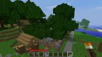 植林地の巨木
