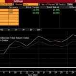 『【配当貴族】11月はS&P500指数を上回るパフォーマンスでした』の画像