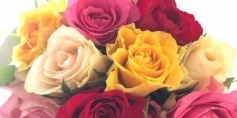 嫁さんの誕生日に生まれて初めて花束を買って「あいしてる」と伝えた結果…