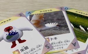 佐渡について学べるカードゲーム