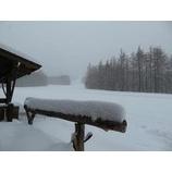 『新雪積もった雫石。パウダー日和です。』の画像