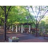 『すがすがしく美しい朝の後谷公園!』の画像