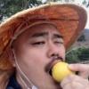 【悲報】フレッシュレモンになりたいしん!