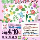 『戸田市花フェスタ2016 4月10日(日)戸田市役所西側市役所通りで開催』の画像