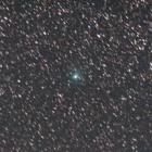 『南天へ移動中のパンスターズ彗星(C/2016 M1)』の画像