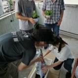 『【高田馬場】緑のカーテン』の画像