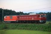 『2020/9/7~8運転 EF81-141牽引DD14-327廃車配給』の画像