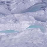 『雪紋シュカブラ』の画像