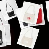 『ショッピングバッグにも使用可能なフライウェイトトートバッグを含むThe North Faceバッグ各種が6/25 11:00発売』の画像