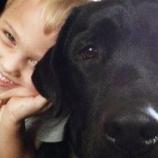 『飼い主の命を守り続ける犬』の画像