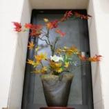 『今月の待合室の花アート』の画像