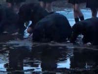 【悲報】欅坂46の小林と菅井、避雷針MVで泥水への土下座を嫌がりちゃんとやっていなかった...