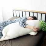 お前ら抱き枕買ってみマジで寝るとき幸せになるぞwww
