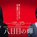 『【映画】 八日目の蝉 【母よりも母】』の画像