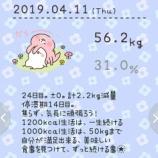 『56.2kg。合計2.2kg減量。1318kcal。24日目。ブログ名を変更しました!旧ブログ名「1200kcalダイエット。365日検証」』の画像