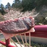 『販売開始わずか35分で完売!法多山の桜だんごをGETしに行ってきた!』の画像