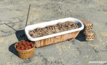 Filled Brahmin Feed and Water Troughs