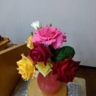 『バラが咲いた!僕の庭に・・マイク眞木の歌で』の画像