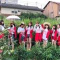 【悲報】NMB48・22ndシングル「初恋至上主義」が大爆死。。。敗因は?→