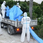 【沖縄】派遣要請を受け豚コレラ防疫をする自衛隊員を「作業員」と紹介する沖縄タイムス