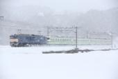 『2016/2/25運転 新潟115系L13編成4両廃車配給』の画像
