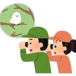 『気になる銘柄たち~日本株編』の画像