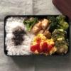 鶏モモ肉ガーリック醤油炒めのお弁当〜食べざかり男子のお弁当