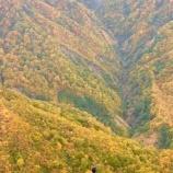 『山から下りると別世界のよう』の画像
