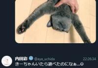 『【悲報】大人気アニメの人気声優さん、彼氏と同棲疑惑が浮上してしまう』の画像