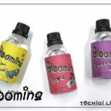 『「Blooming」と仕込み歌』の画像