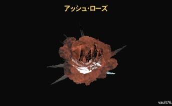 アッシュ・ローズ(Ash rose)