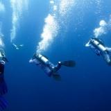 【技術】水中での呼吸を可能にする繊維がつくられる