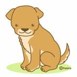 『【クリップアート】ビーグル犬・柴犬のイラスト』の画像