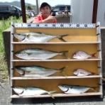 中本渡船ブログ